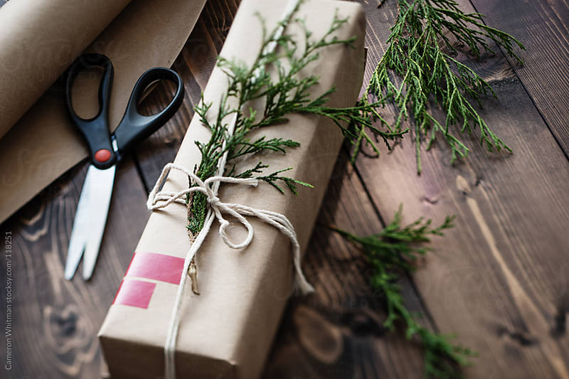 Natural Wrap Holiday Gifts by Cameron Whitman for Stocksy United