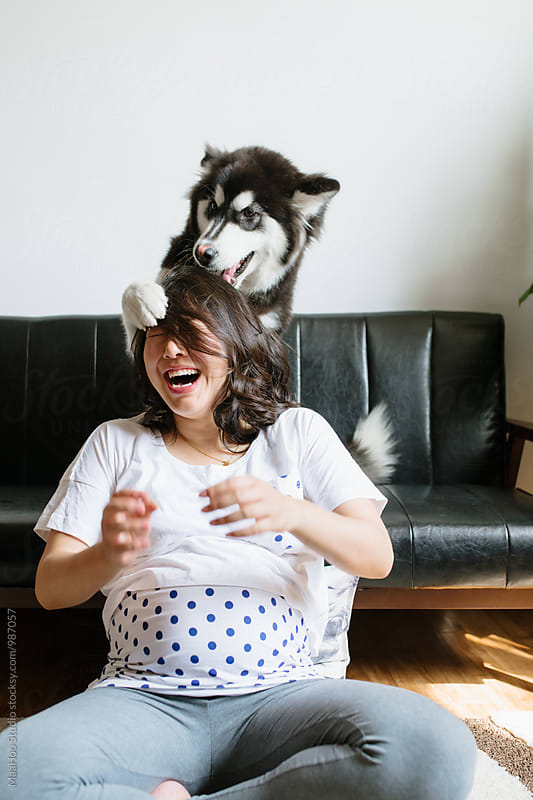 Pregnant young woman with her Alaskan malamute by MaaHoo Studio for Stocksy United