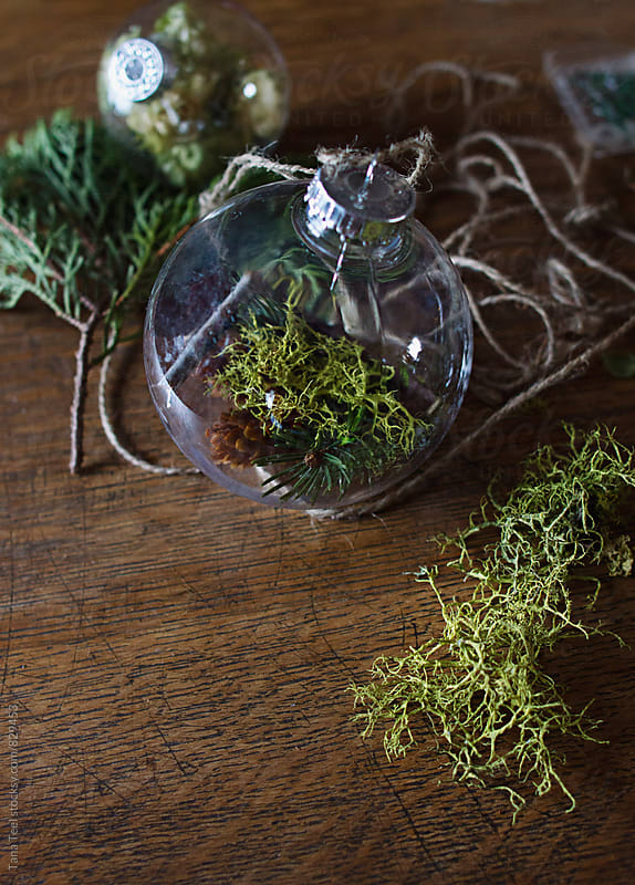 Natural materials used to fill glass Christmas ornament by Tana Teel for Stocksy United