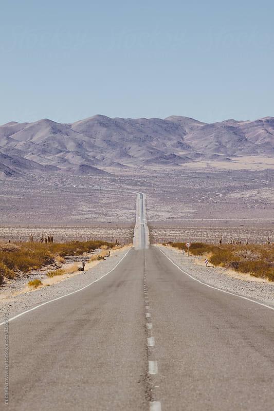 Desert road by michela ravasio for Stocksy United