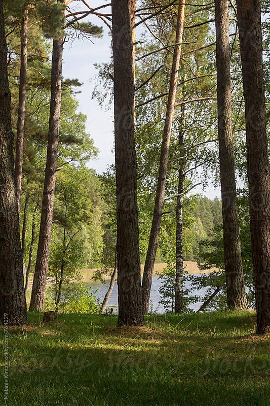 Campground at the lake Asalnai in the Aukstaitija National Park, Lithuania by Melanie Kintz for Stocksy United