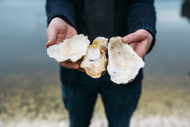 found oyster shells by Kim Jay for Stocksy United