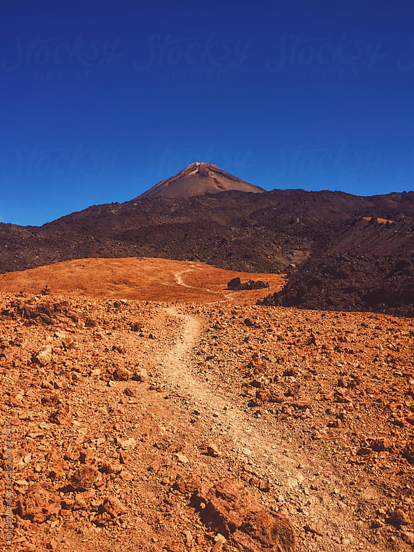 Teide by Paul Schlemmer for Stocksy United