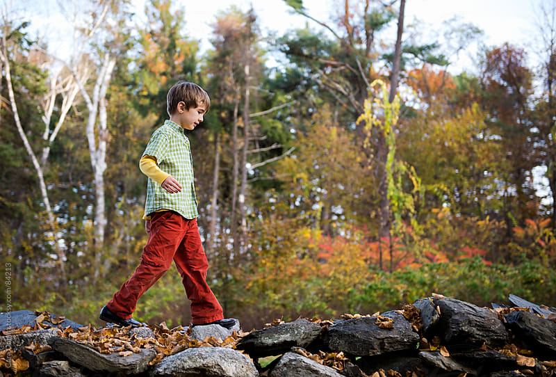 Boy walks on old stone wall in a forest in autumn by Cara Dolan for Stocksy United
