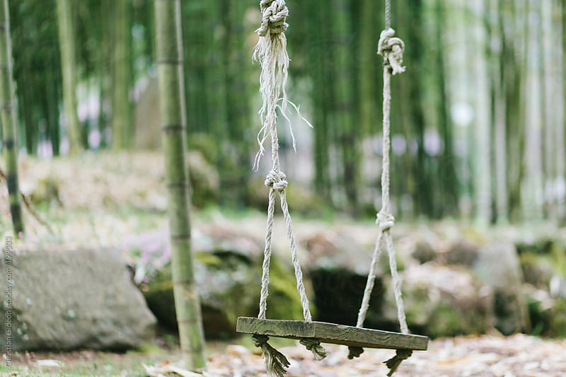 Rope Swing at Mountain Retreat by Christian Gideon for Stocksy United