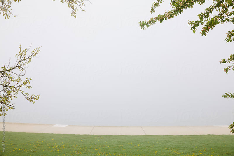 Foggy Chicago Lakefront by Anjali Pinto for Stocksy United