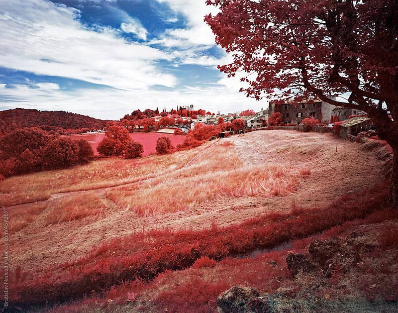 France country nature by Bratislav Nadezdic for Stocksy United