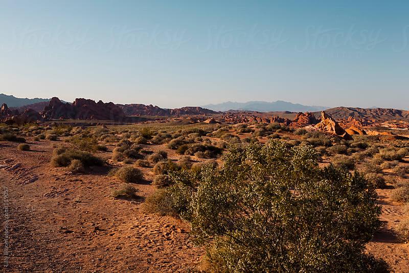 Nevada desert scene at sundown by Lilly Bloom for Stocksy United