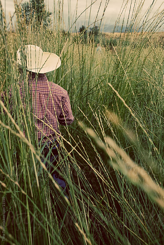Young cowboy in tall grass. by Tana Teel for Stocksy United