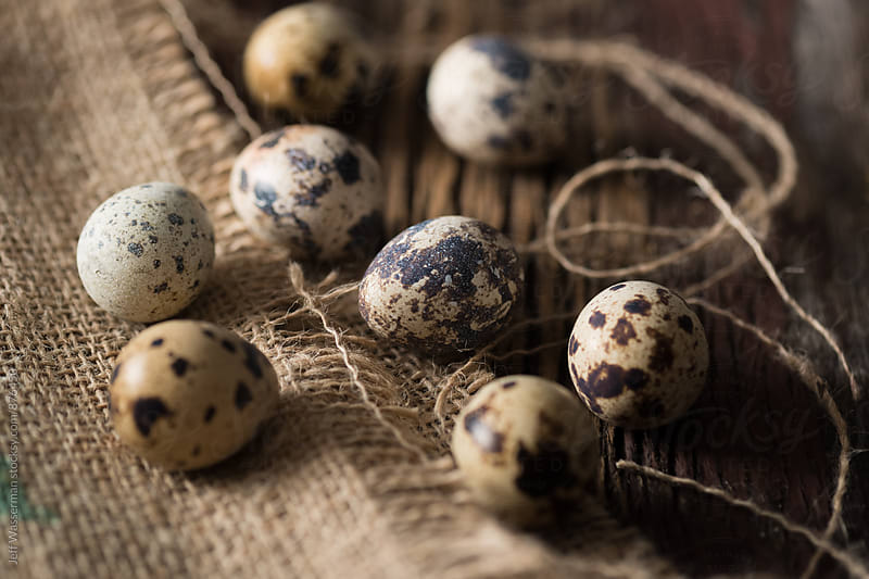Quail Eggs in Rustic Setting by Studio Six for Stocksy United