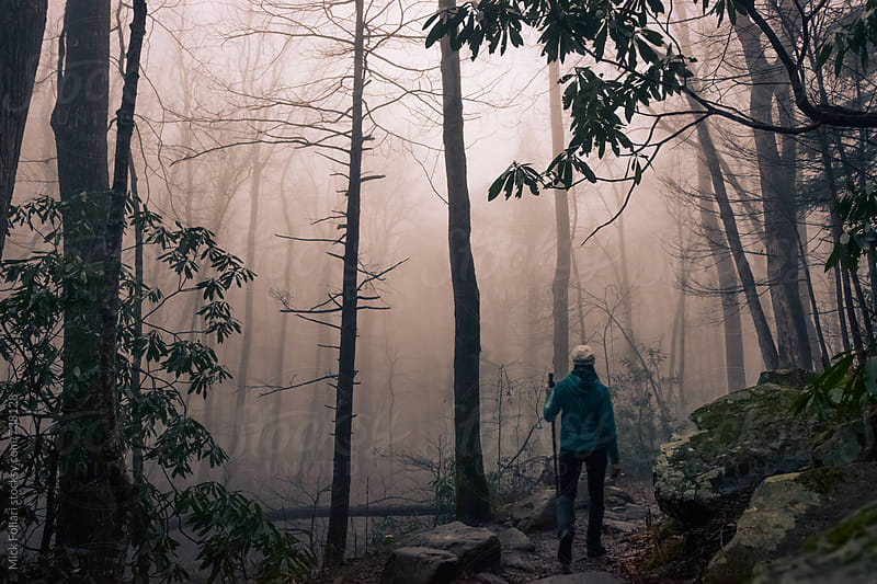 Hiker in moody light in the forest by Mick Follari for Stocksy United