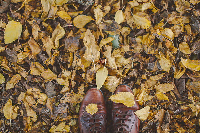 Vintage brown woman shoes covered in yellow autumn leaves by Sanja (Lydia) Kulusic for Stocksy United