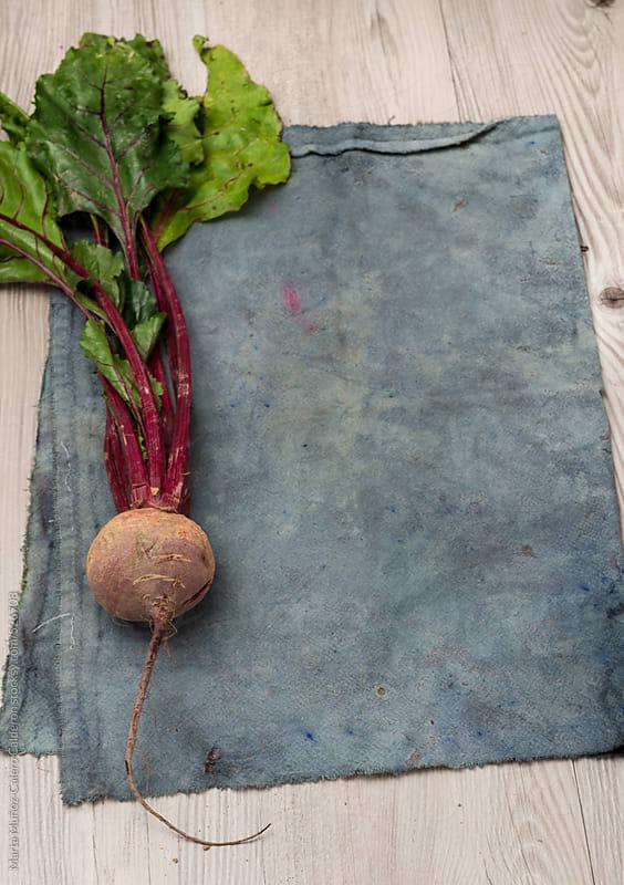 Beet on a grey vintage cooking cloth by Marta Muñoz-Calero Calderon for Stocksy United