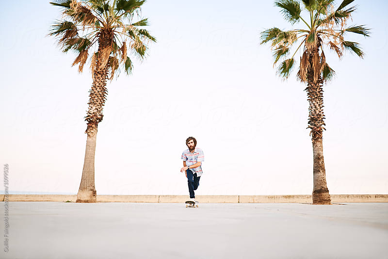 Riding skateboarder on blue sky and palms by Guille Faingold for Stocksy United