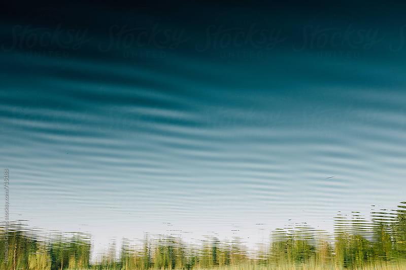 Trees Reflecting in Deep Blue Lake by Nemanja Glumac for Stocksy United