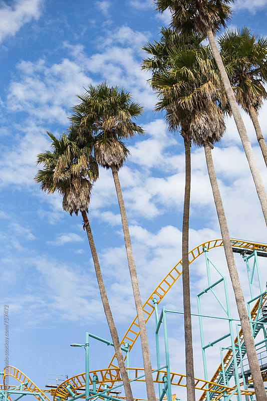 Rollercoaster with palm trees by michela ravasio for Stocksy United