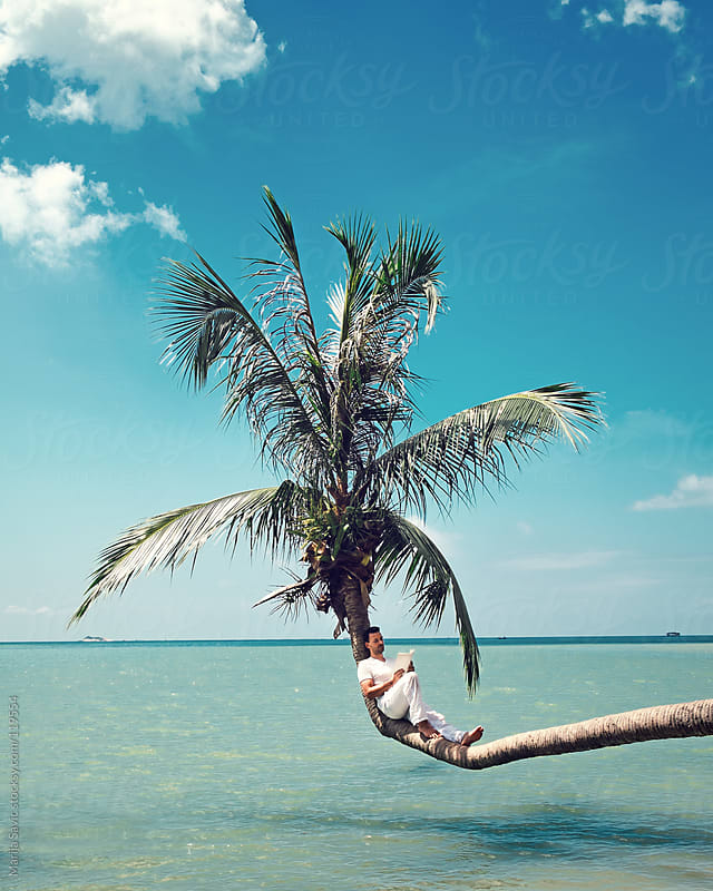 Man reading a book and sitting on a palm tree above sea. by Marija Savic for Stocksy United