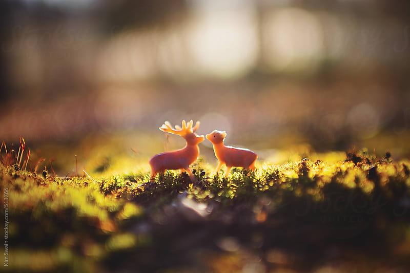 Deer in Love by Kim Swain for Stocksy United