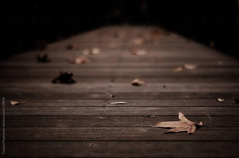Dark Bridge Going Into Infinity by Tamara Pruessner for Stocksy United
