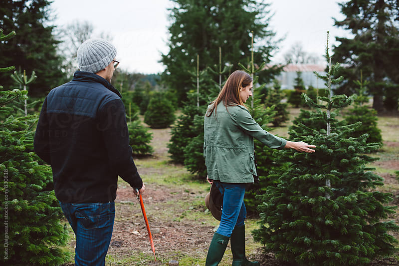 Couple picking out christmas tree together by Kate Daigneault for Stocksy United