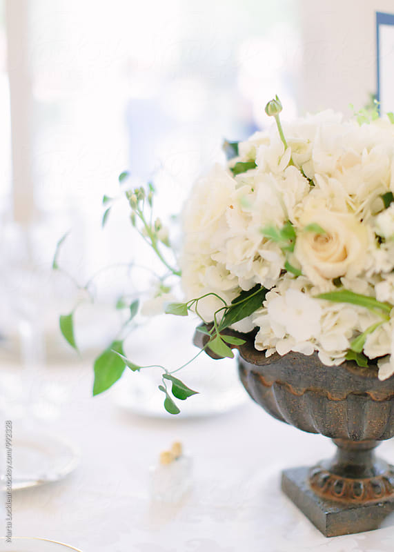 White floral arrangement by Marta Locklear for Stocksy United