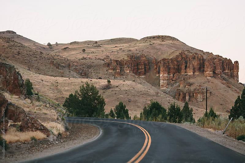 California Landscape by Ania Boniecka for Stocksy United
