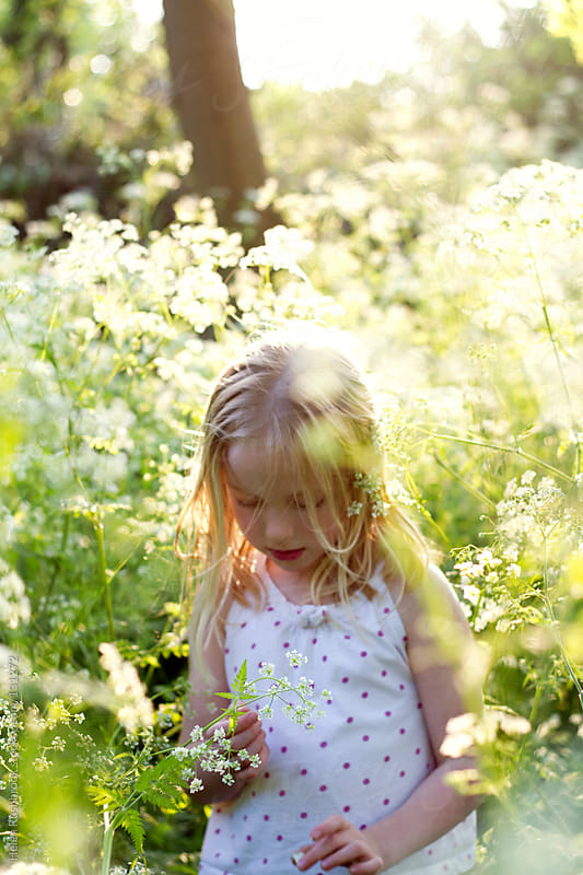 A little girl picking cow parsley by Helen Rushbrook for Stocksy United
