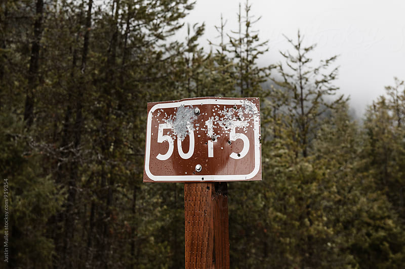 Forest service road sign by Justin Mullet for Stocksy United