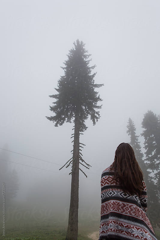 Mornings in nature - woman looking at the misty tree by Jovo Jovanovic for Stocksy United