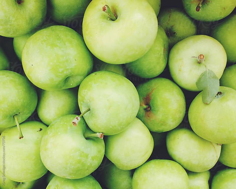 Fresh green apples at a summer vegetable market. by Greg Schmigel for Stocksy United
