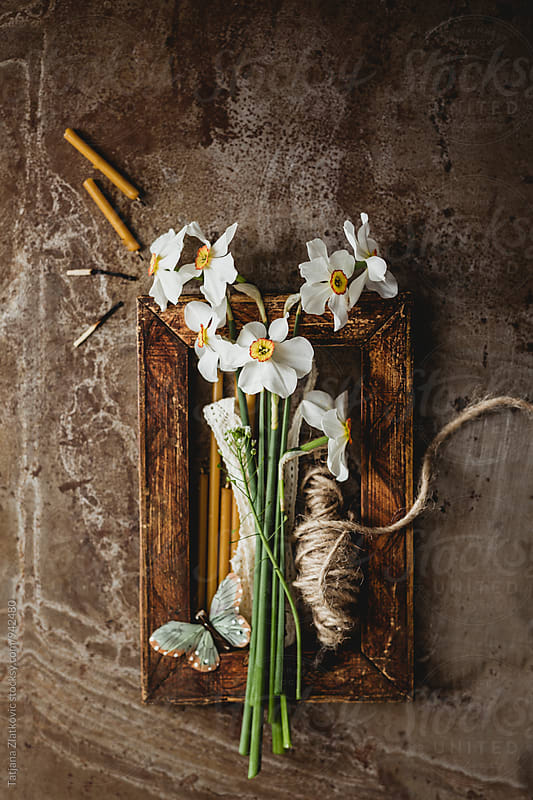 Spring decoration by Tatjana Ristanic for Stocksy United
