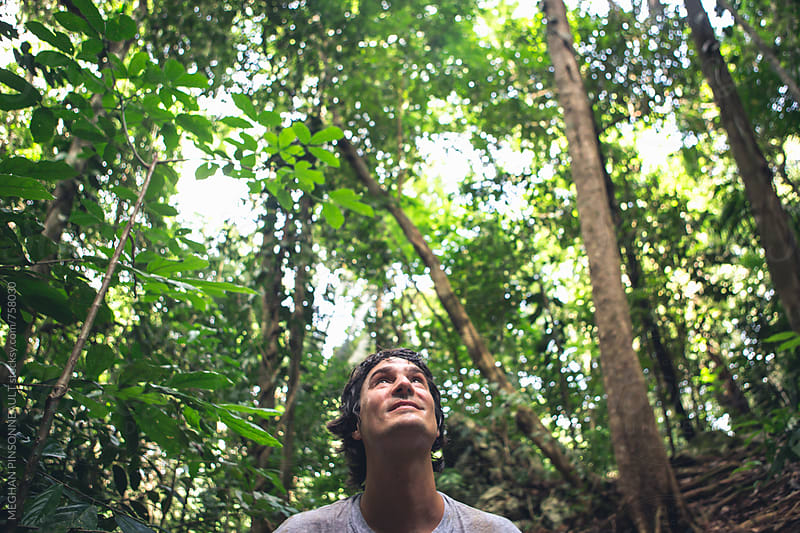Man Looking Up Surrounded by Lush Jungle by MEGHAN PINSONNEAULT for Stocksy United