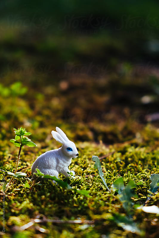 Miniature Plastic Toy White Bunny Rabbit in grass by J Danielle Wehunt for Stocksy United