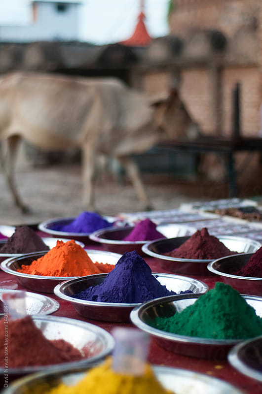Indian tikka powders. by David Navais for Stocksy United