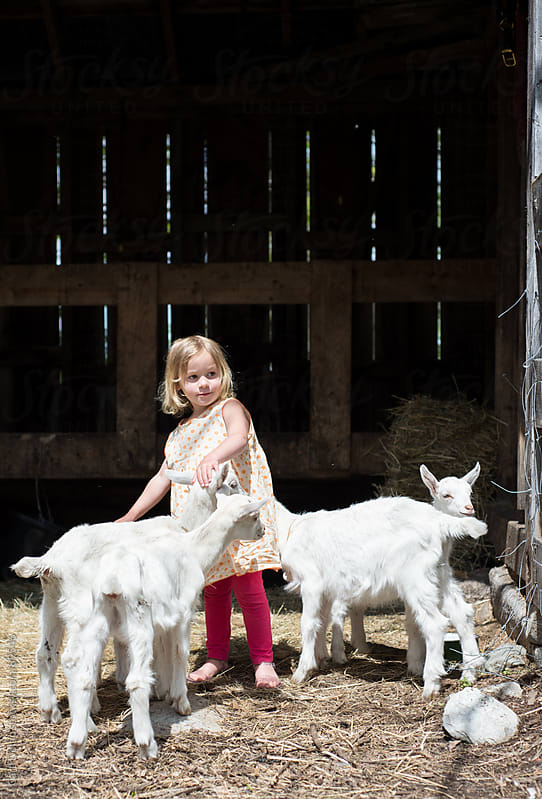 Little girl plays with baby goats on a farm by Cara Dolan for Stocksy United