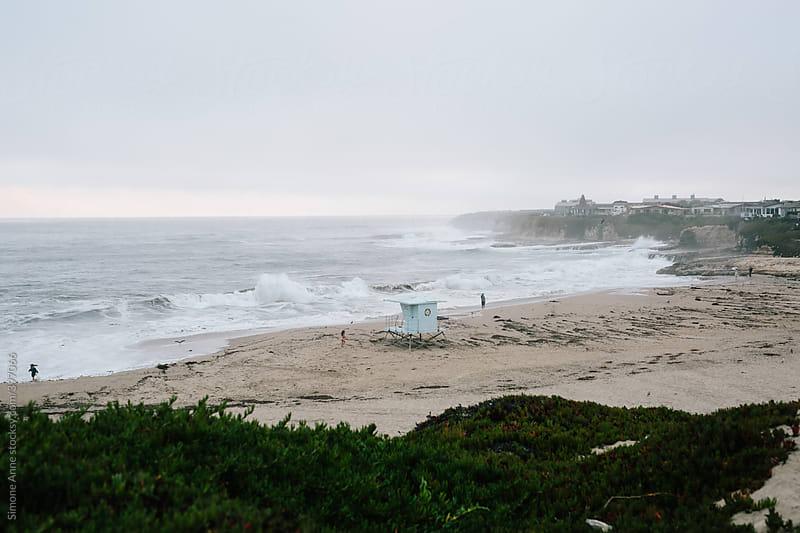 Natural Bridges State Beach, Santa Cruz, California by Simone Anne for Stocksy United