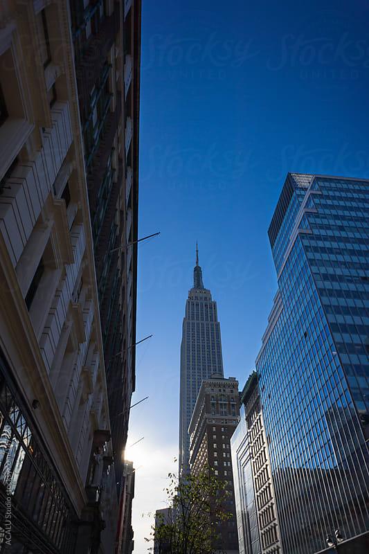 Skyscraper in New York by ACALU Studio for Stocksy United