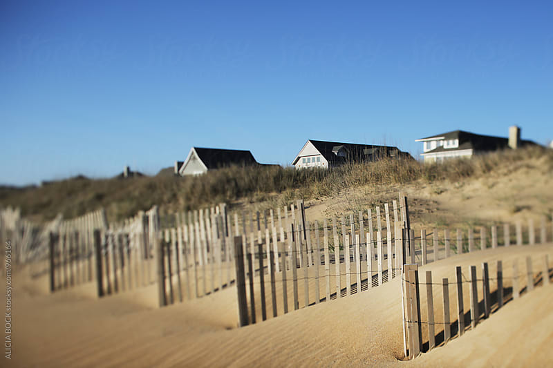A Row Of Coastal Beach Houses In The North Carolina Dunes by ALICIA BOCK for Stocksy United
