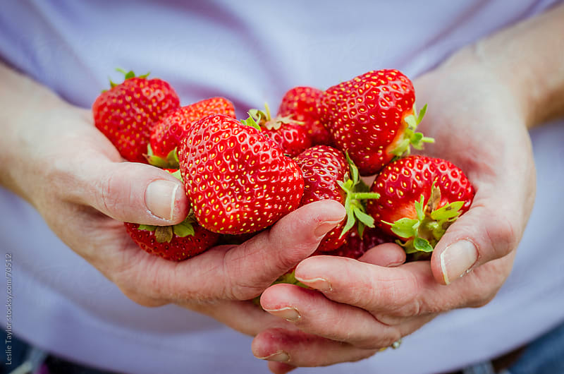 A Handful of Strawberries by Leslie Taylor for Stocksy United