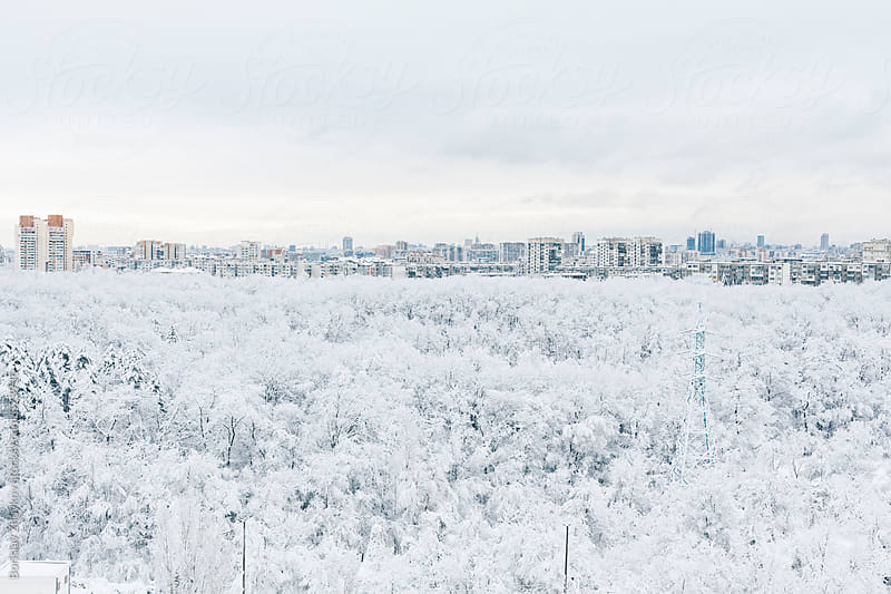 High Angle View Of The City During Snowy Winter by Borislav Zhuykov for Stocksy United