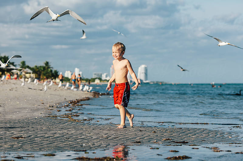 Boy and Seagulls on Beach by Stephen Morris for Stocksy United