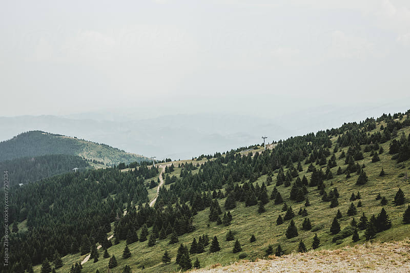 Mountain Kopaonik in the summer by Tatjana Zlatkovic for Stocksy United