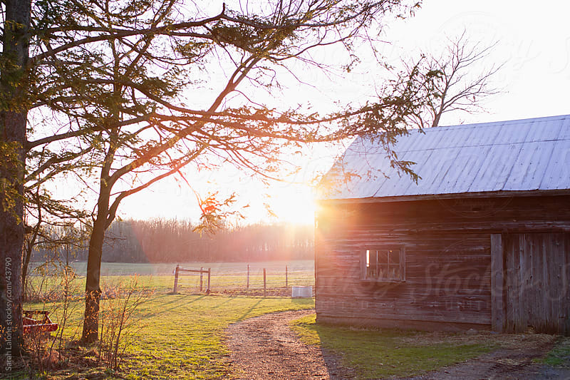 An old barn in the sunset on a farm with a path. by Sarah Lalone for Stocksy United