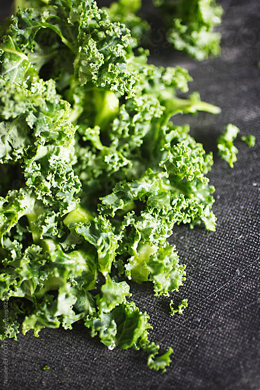 kale by Natalie JEFFCOTT for Stocksy United