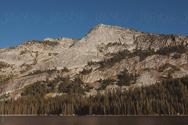 Tenaya Lake by Nicholas Roberts for Stocksy United