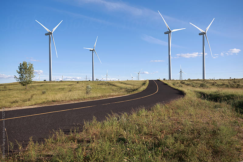 Environmentally friendly power generation wind power turbines by Wenhai Tang for Stocksy United