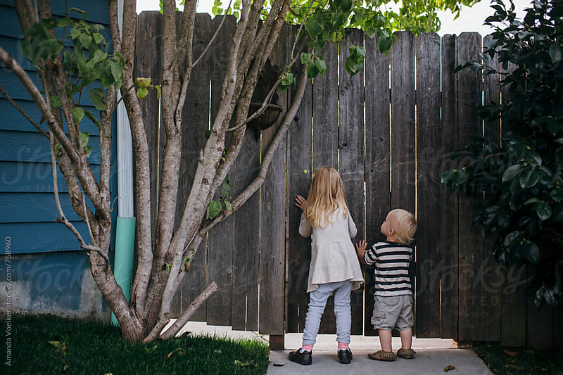 Two young children stand outside a closed wooden gate while the little girl peeks through by Amanda Voelker for Stocksy United