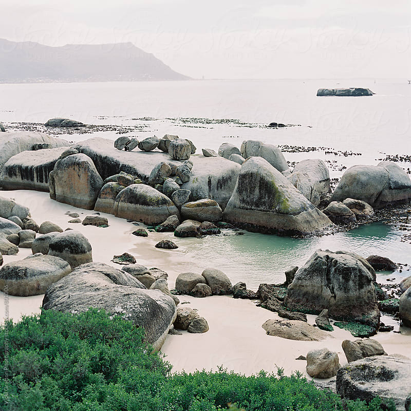 Boulders Beach South Africa  by Vicki Grafton Photography for Stocksy United