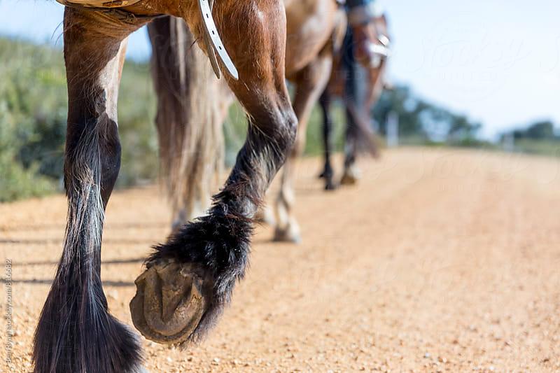 Hooves of horse walking on gravel road by Ben Ryan for Stocksy United