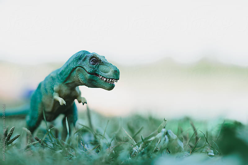 Green toy dinosaur on grass by Amir Kaljikovic for Stocksy United